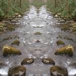 Diverging Streams