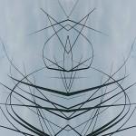 Mirrored Grass 3